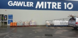 Mitre 10 Painted
